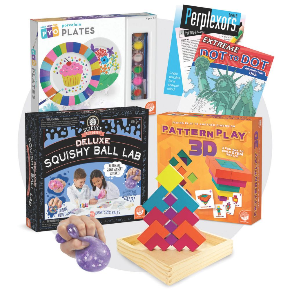 Brainy Bundle for Ages 10-11 From MindWare
