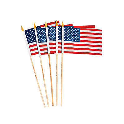 9ed009fef730 Small Cloth Personalized American Flags