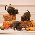 Realistic Hairy Rats Halloween Décor