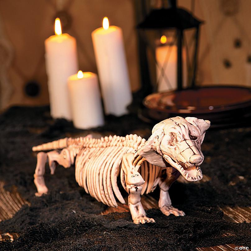 Dachshund Halloween Decorations.Dachshund Dog Skeleton Prop Seasonal Decor Halloween