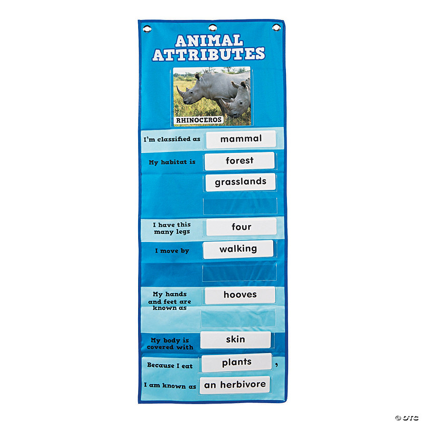 Animal Attribute Pocket Chart
