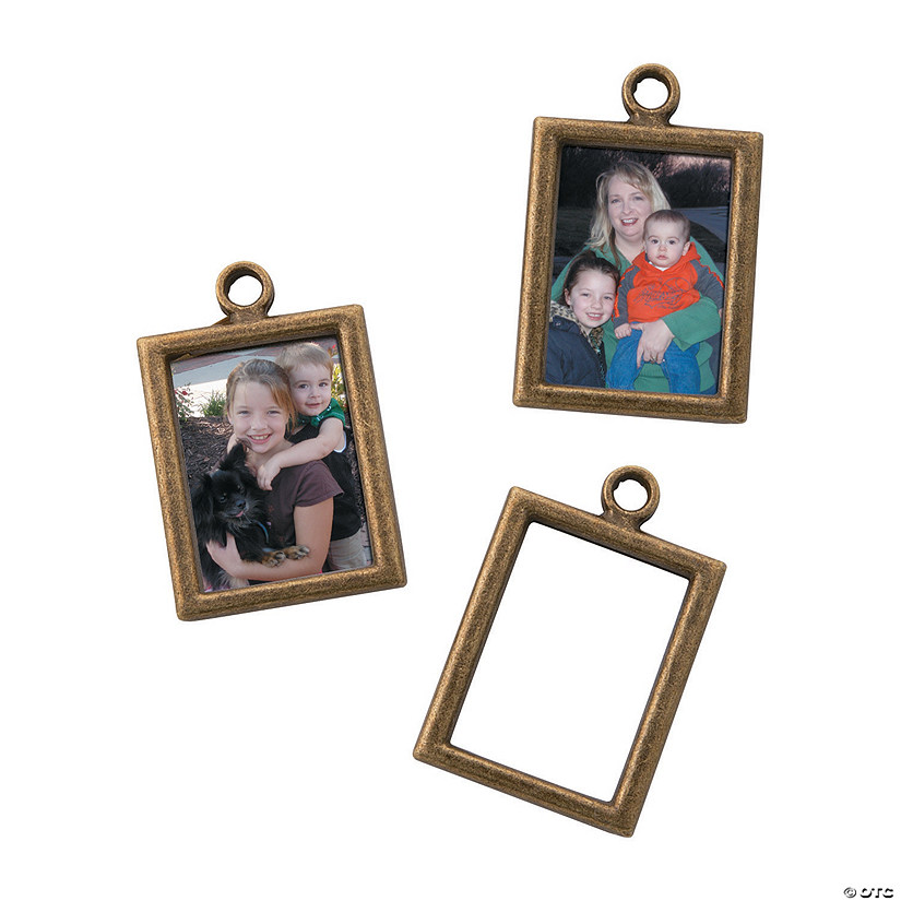 Antique Goldtone Frame Charms
