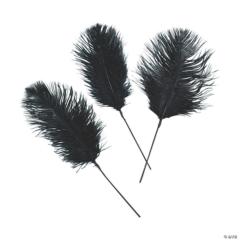 Black Ostrich Feathers Audio Thumbnail
