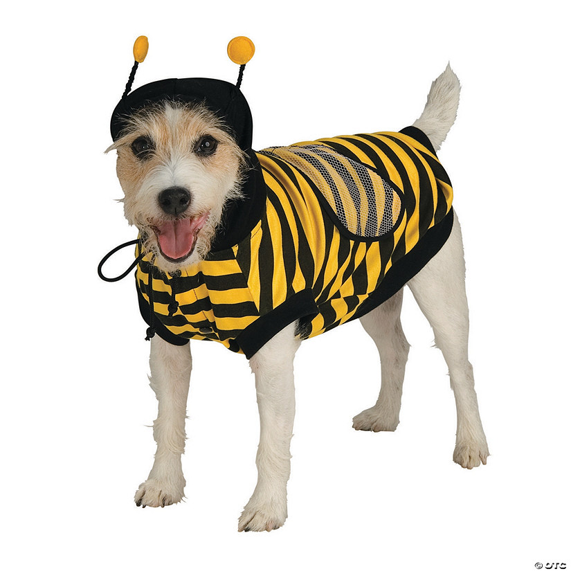 Bumblebee Dog Costume Audio Thumbnail