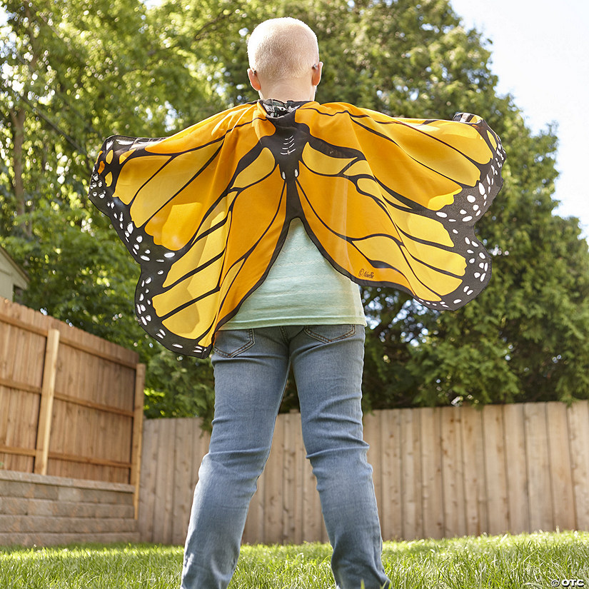Butterfly Wings: Orange Image Thumbnail