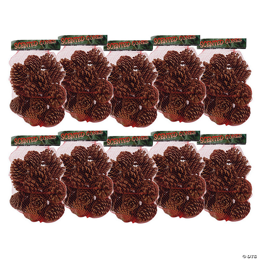 Cinnamon Scented Pinecones 12-14/Pkg-Large
