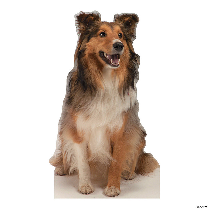 Collie Dog Cardboard Stand-Up
