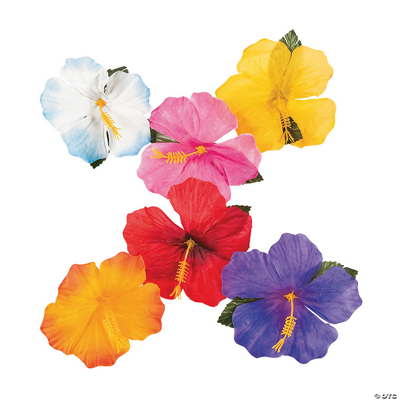 Decorative Hibiscus Flowers Audio Thumbnail