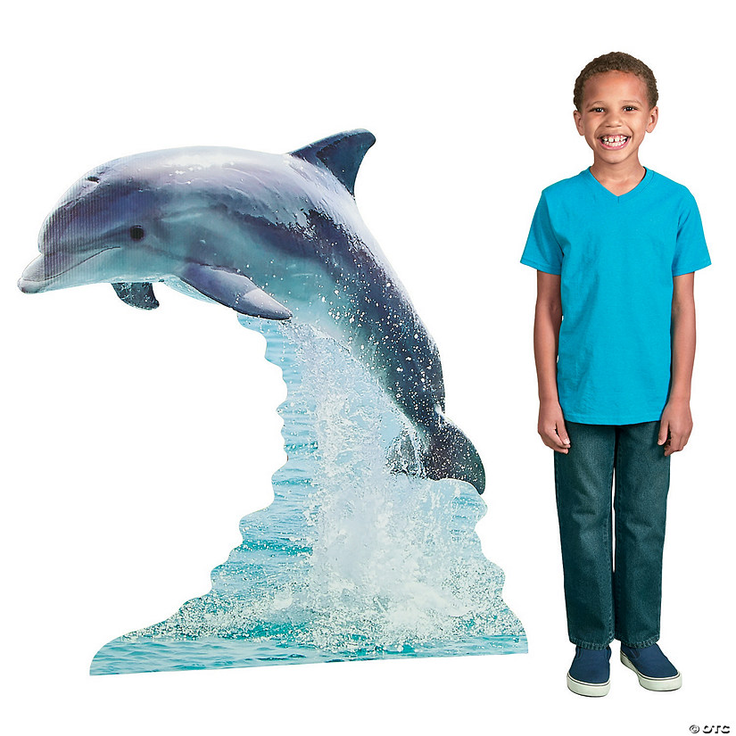 Dolphin Cardboard Stand-Up Audio Thumbnail