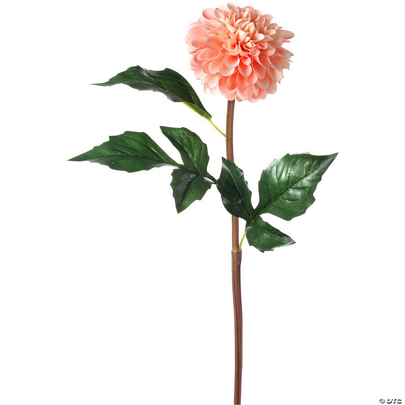 "Faux Caledonia Dahlia 25""-Light Coral Audio Thumbnail"