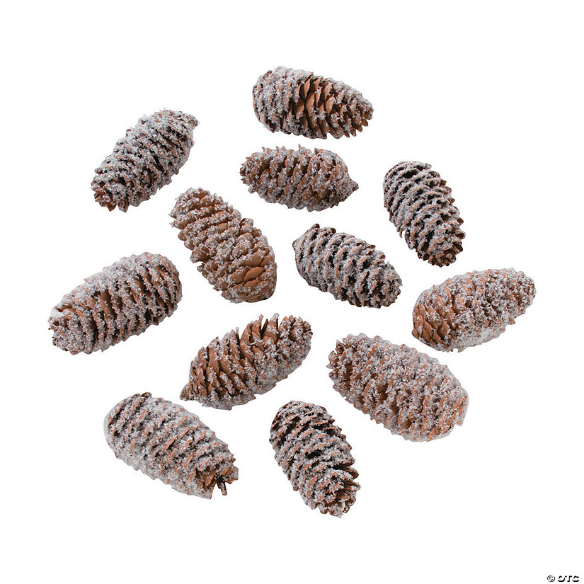 Frosted Pine Cone Assortment
