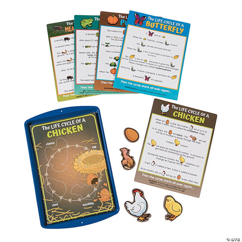 Life Cycle Magnetic Activity Set Image Thumbnail