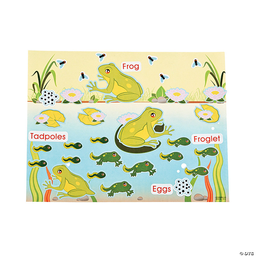 Life Cycle of A Frog Sticker Scenes Audio Thumbnail