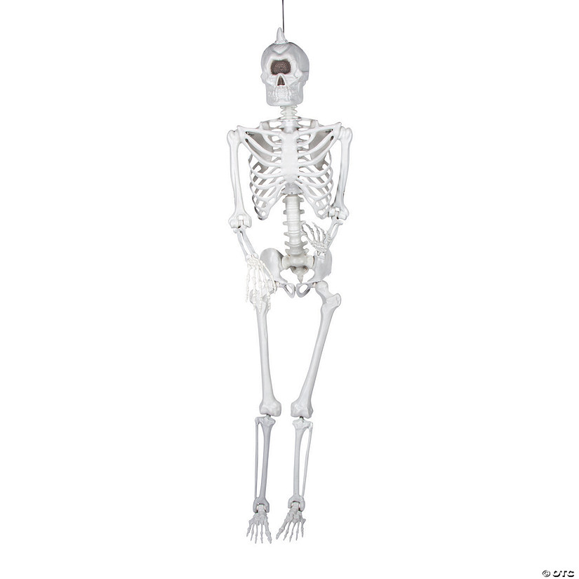 Life-size Cyclops Skeleton Halloween Decoration Image Thumbnail