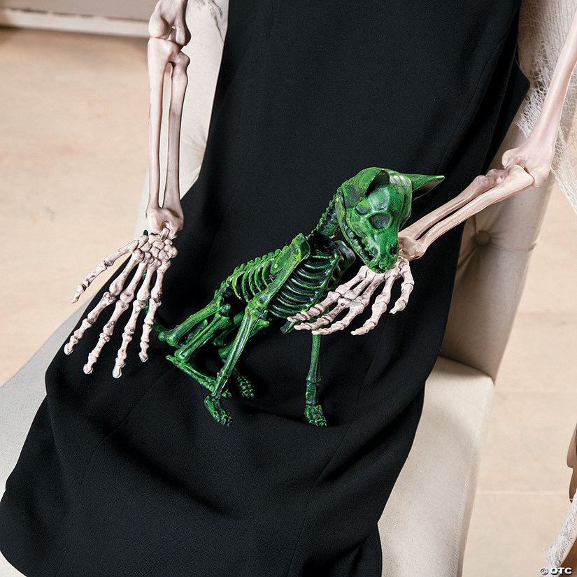 Neon Green Halloween Skeleton Chihuahua Halloween Decoration Audio Thumbnail