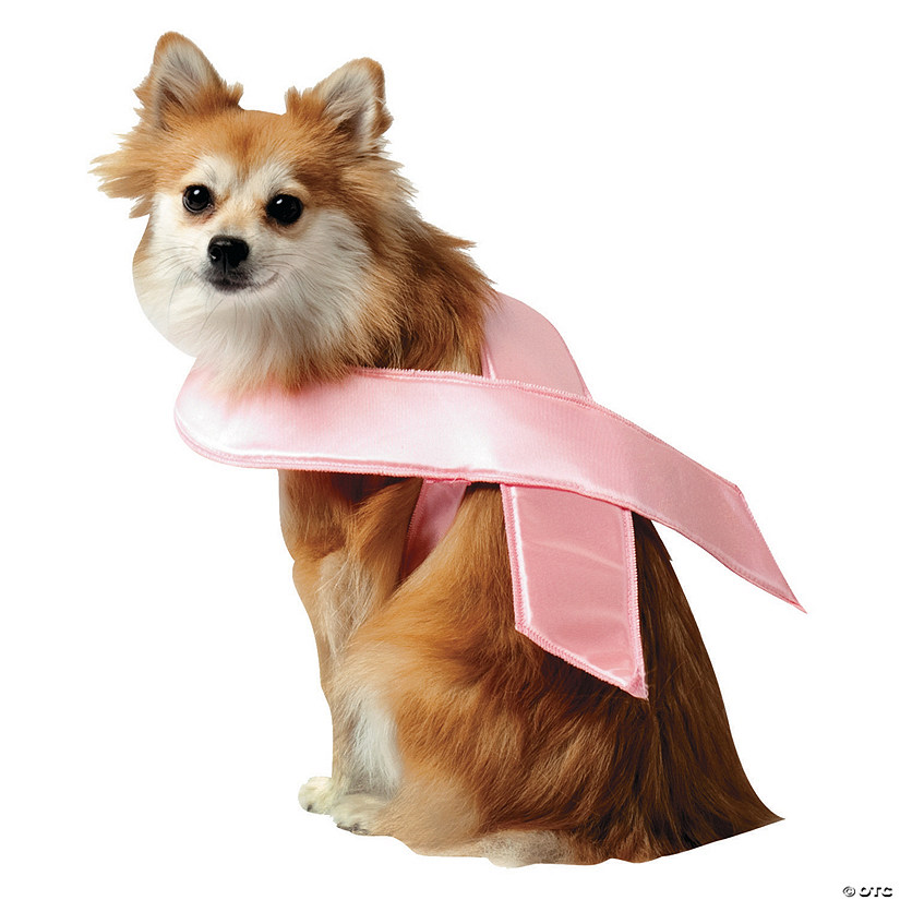 Pink Ribbon Dog Costume Audio Thumbnail