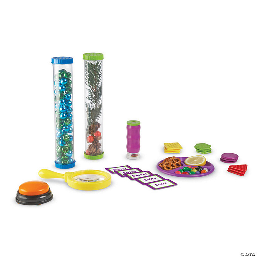 Primary Science 5 Senses Activity Set
