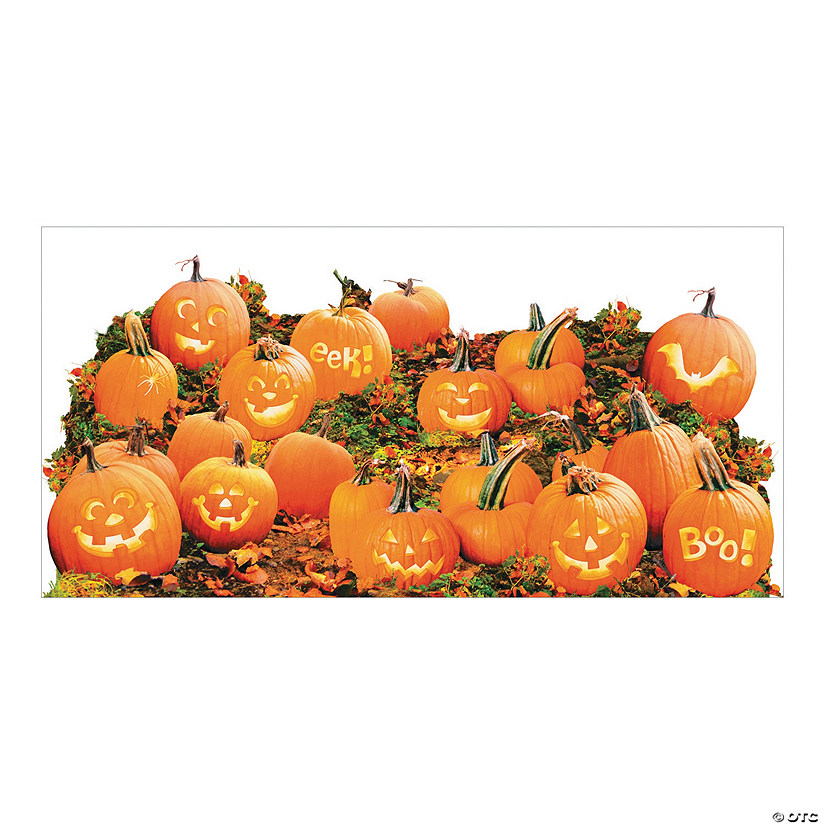 Pumpkin Patch Backdrop Image Thumbnail