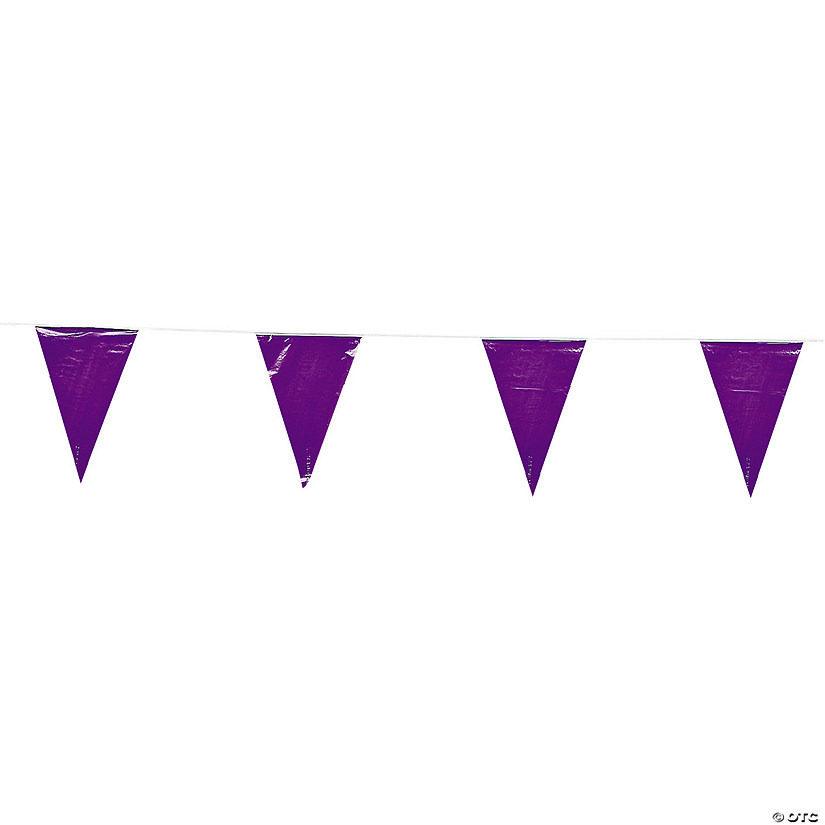 Purple Plastic Pennant Banner Audio Thumbnail