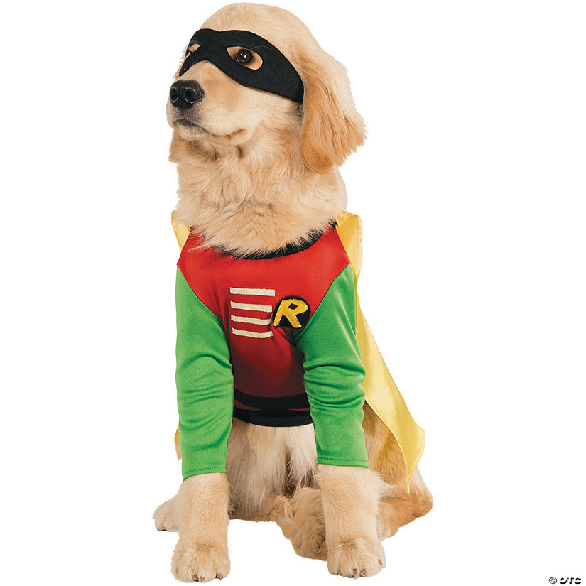 Robin Dog Costume Audio Thumbnail
