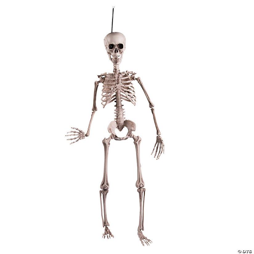 rugged posable skeleton halloween dcor