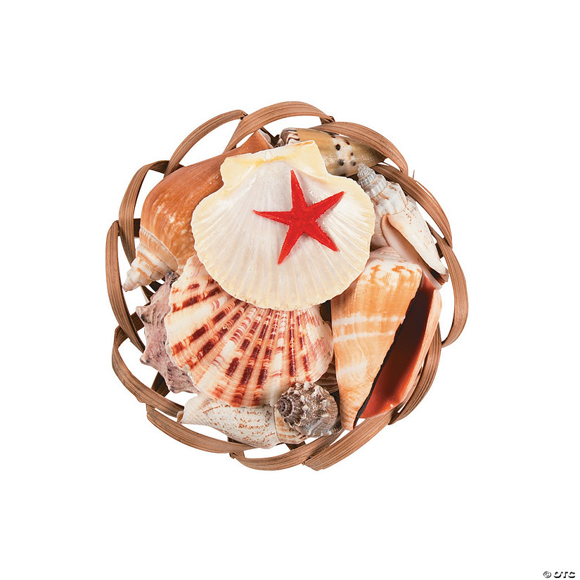 Scallop Basket Sea Shell Assortment