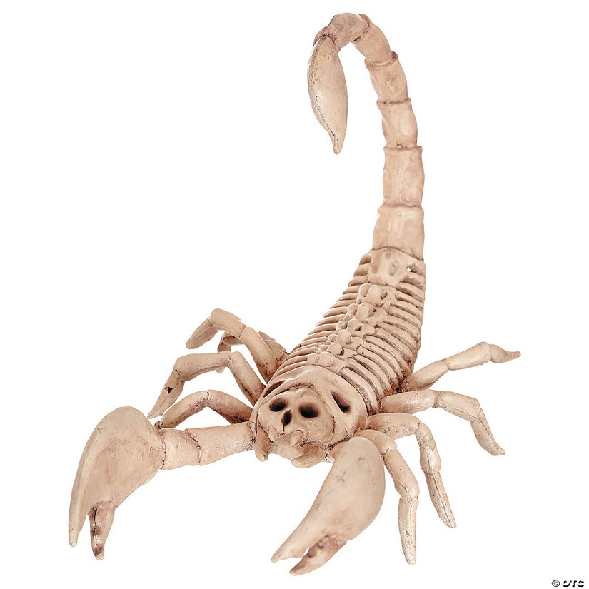 Scorpion Skeleton