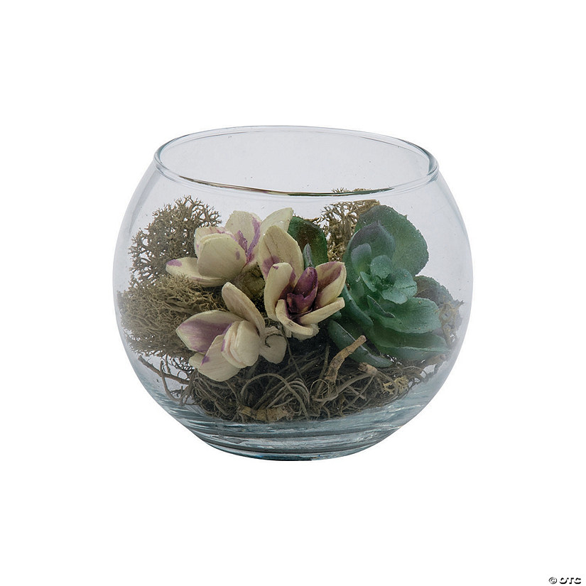 Small Round Glass Vase with Succulents Audio Thumbnail