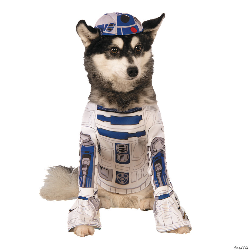 Star Wars™ R2-D2 Dog Costume Audio Thumbnail