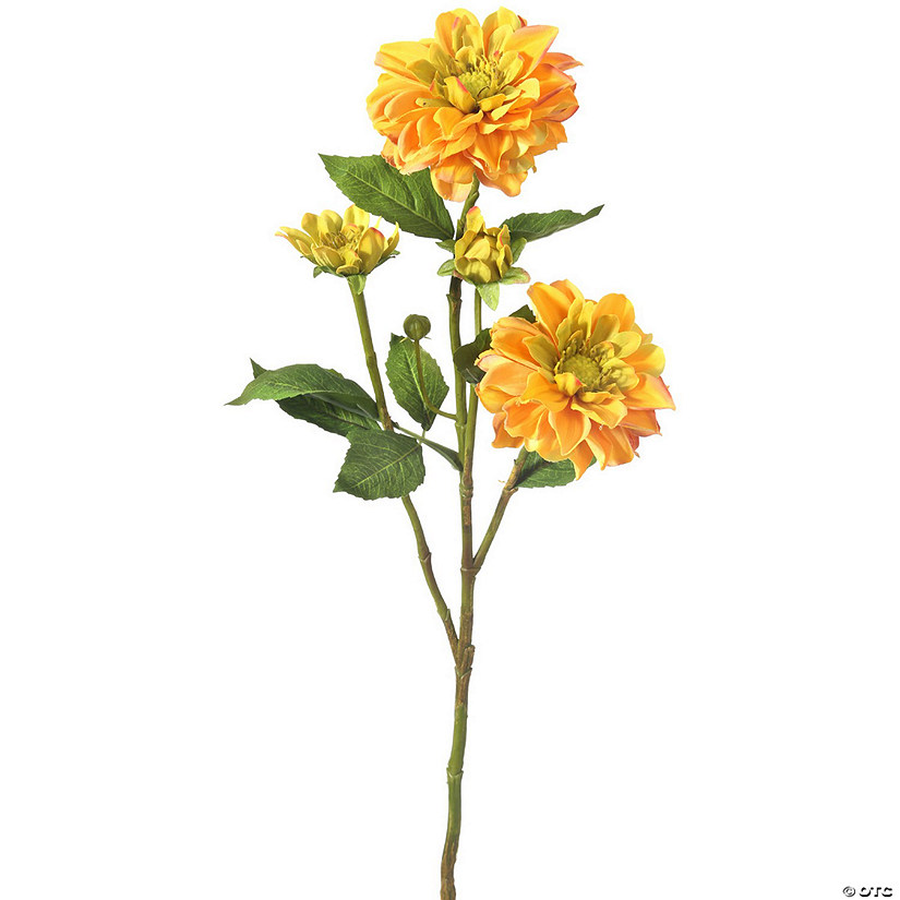 "Teacup Dahlia + 3 Buds 30"" - Golden Audio Thumbnail"