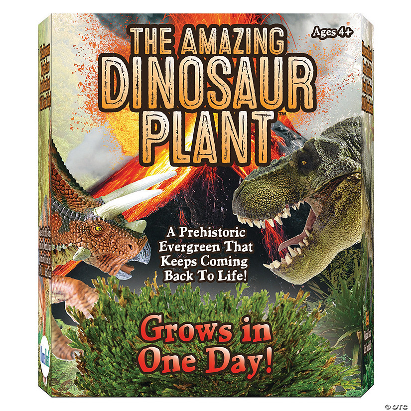 The Amazing Dinosaur Plant