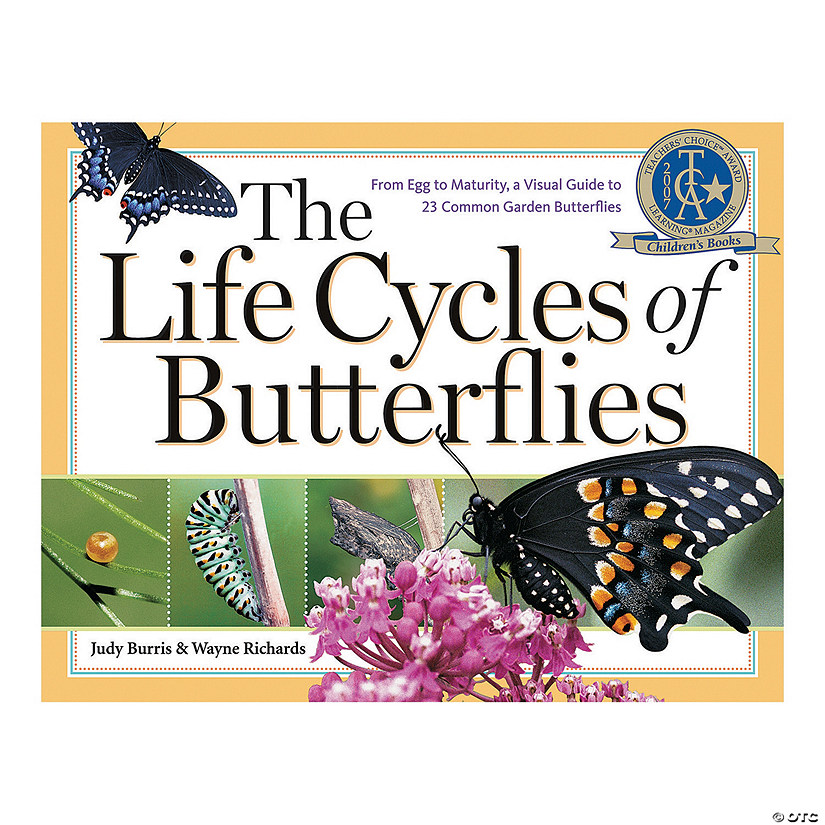 The Life Cycles of Butterflies Audio Thumbnail