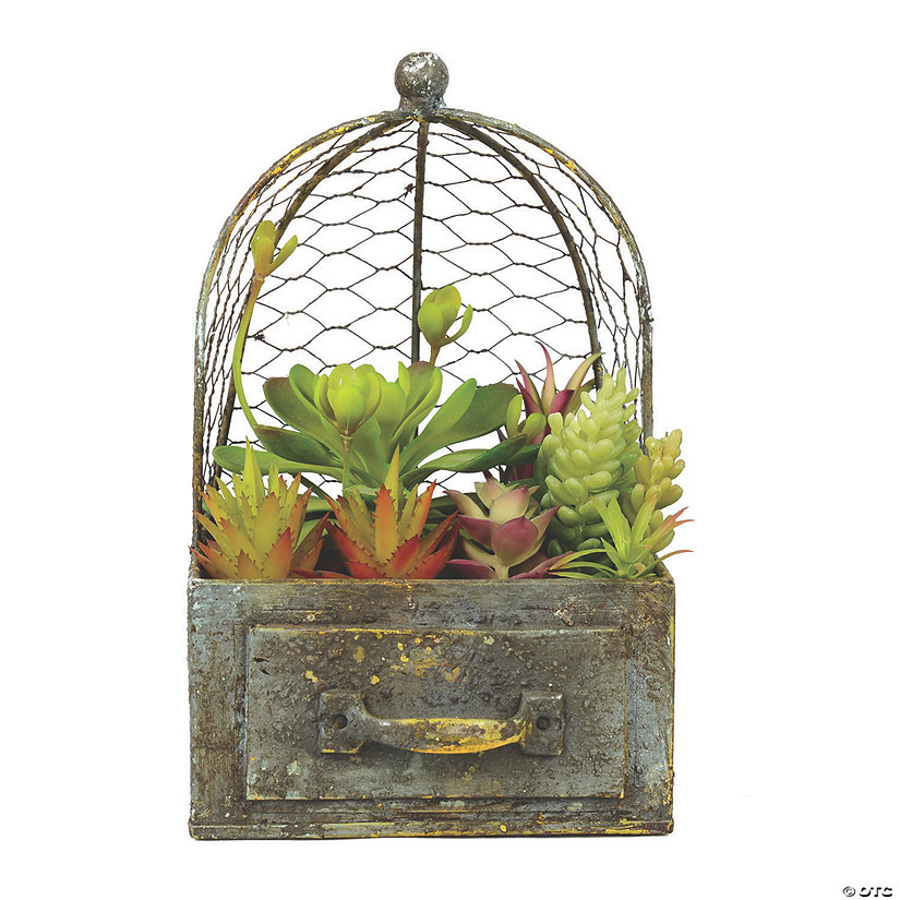 "Vickerman 10"" Artificial Green Assorted Succulents in Rustic Metal Container and Cage Audio Thumbnail"