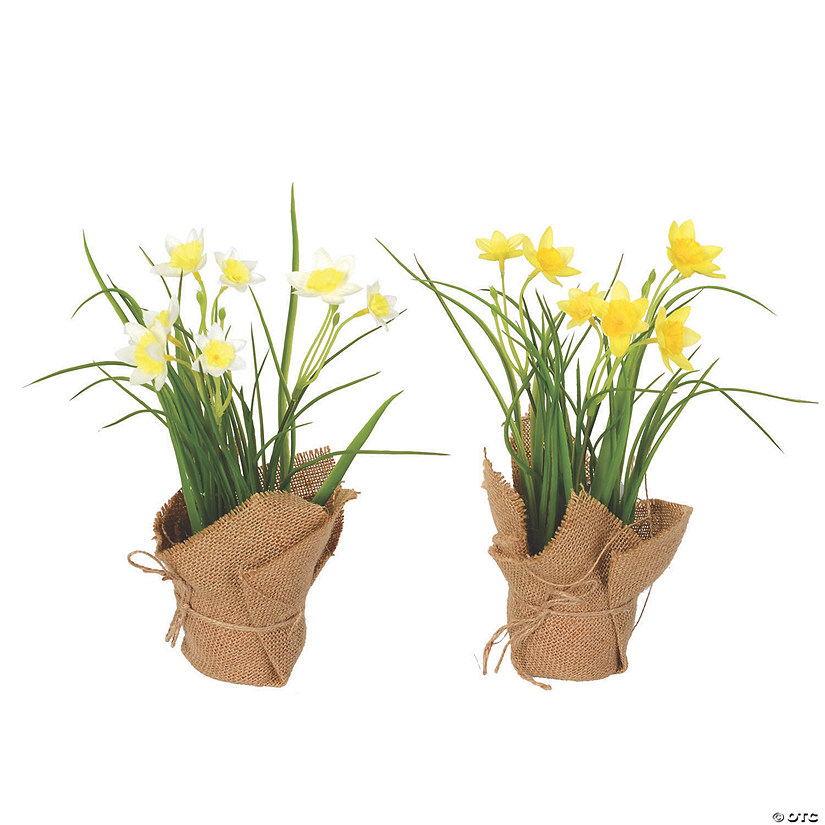 "Vickerman 10"" Artificial Yellow Daffodil in Burlap Pot Audio Thumbnail"