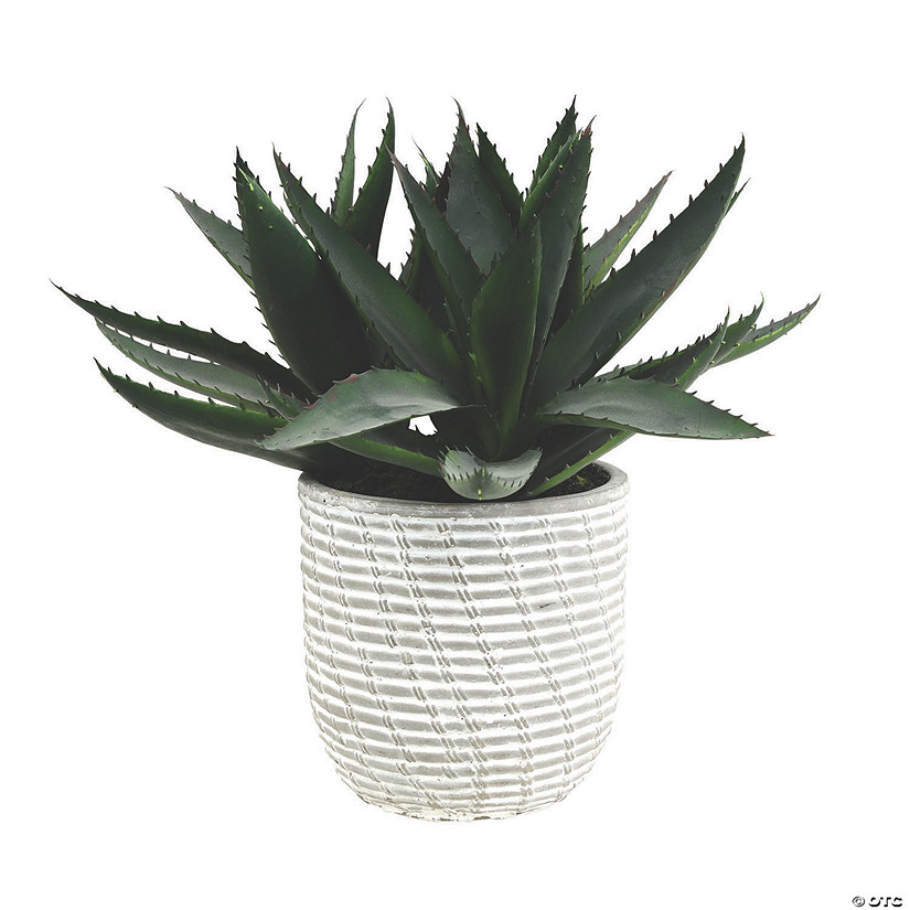 "Vickerman 14"" Artificial Green Succulent in Concrete Gray Pot Audio Thumbnail"