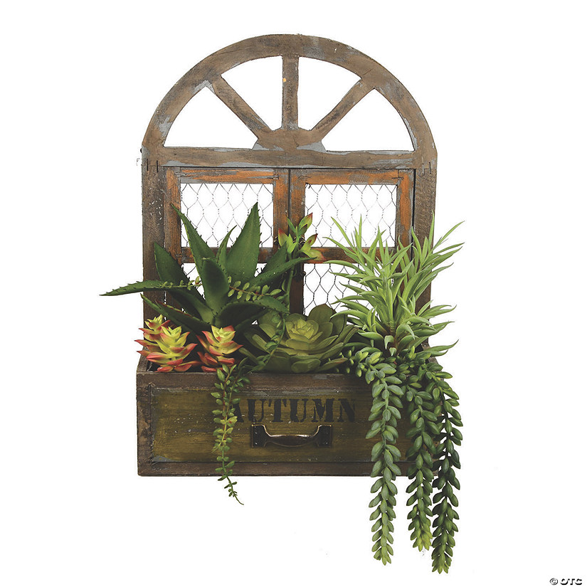 "Vickerman 16"" Artificial Assorted Succulents in Hanging Box Audio Thumbnail"