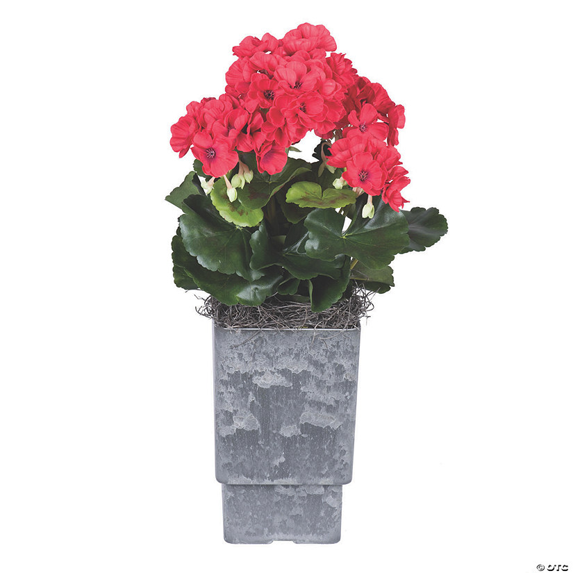 "Vickerman 17"" Artificial Red Geranium And Green Leaves Audio Thumbnail"