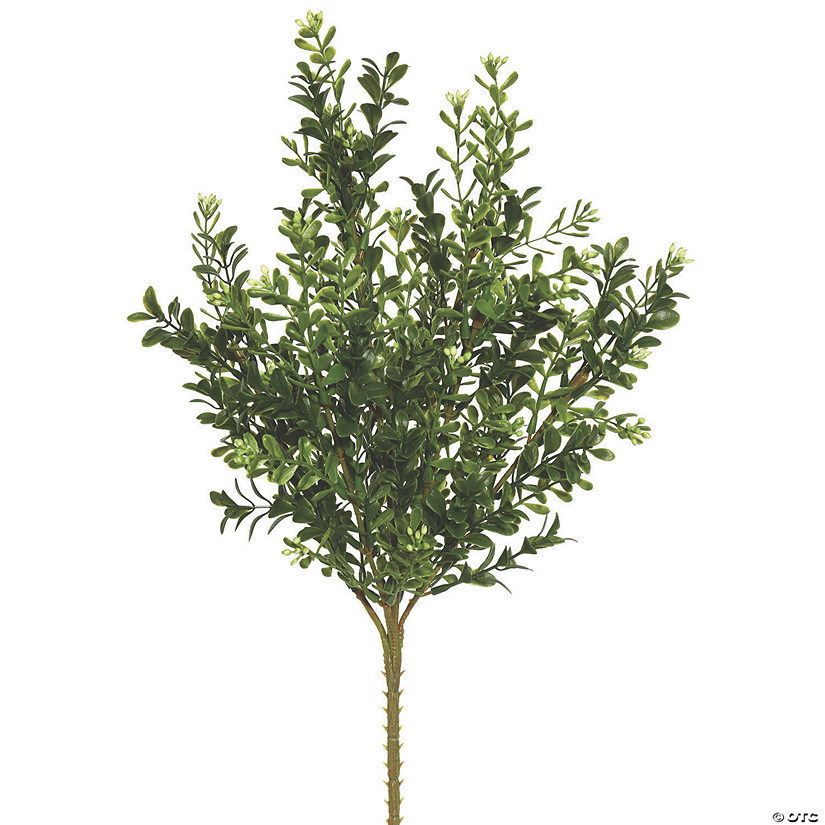 "Vickerman 18"" Artificial Green Boxwood Bush - 3/pk Audio Thumbnail"