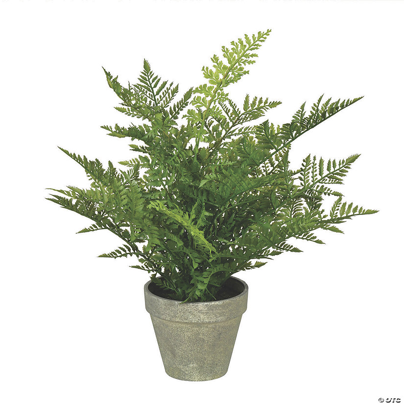 "Vickerman 19"" Green Potted Fern Audio Thumbnail"
