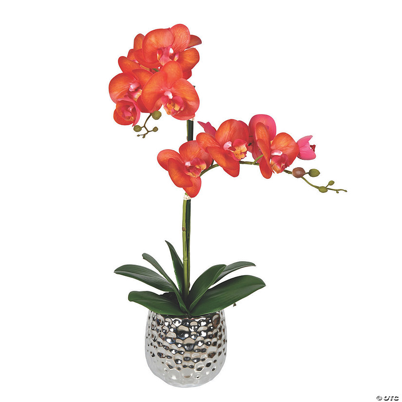 "Vickerman 20.5"" Potted Real Touch Orange Phalaenopsis Spray Audio Thumbnail"
