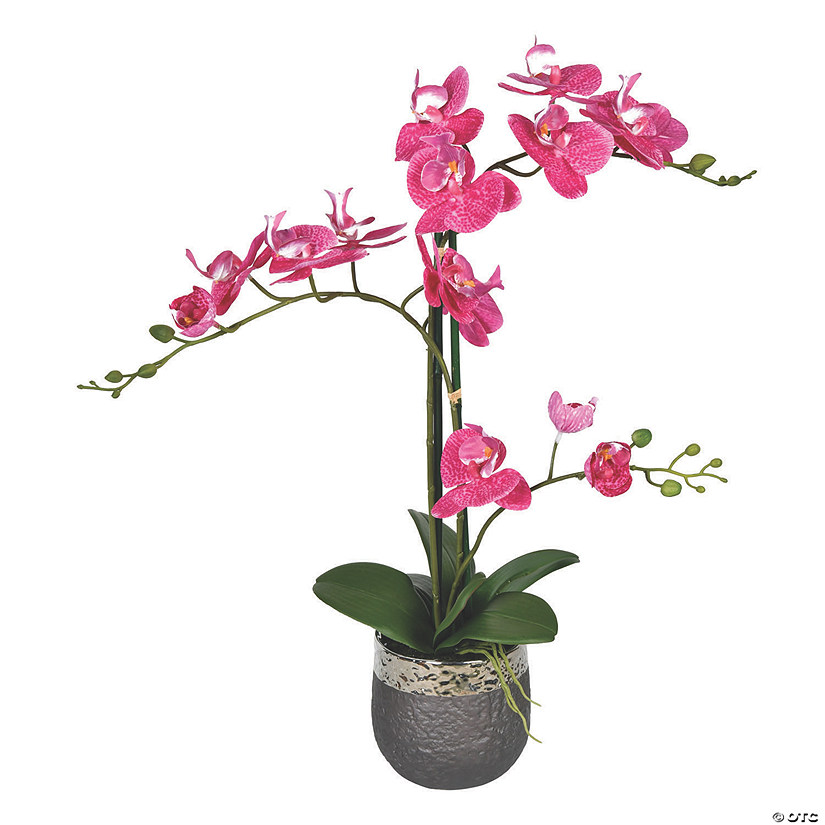 "Vickerman 23.5"" Potted Real Touch Mauve Phalaenopsis Spray Audio Thumbnail"