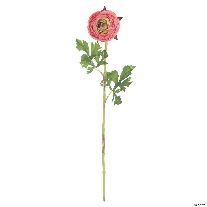 "Vickerman 23"" Artificial Pink Ranunculus Stem - 4/pk Audio Thumbnail"