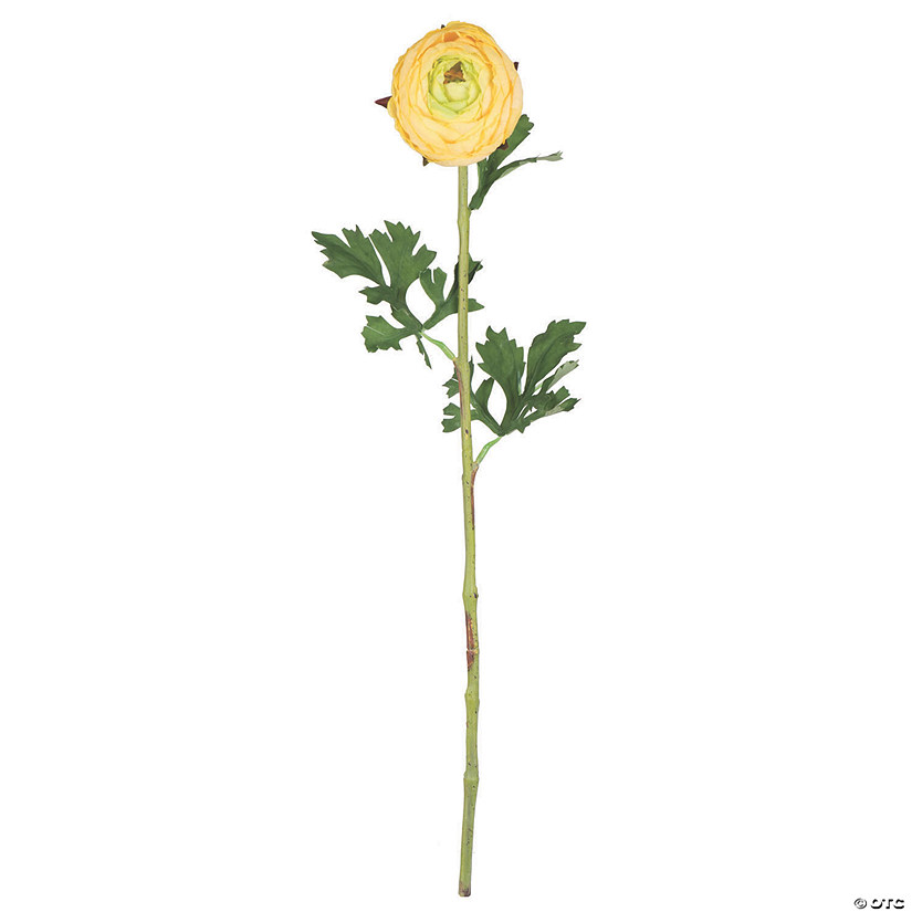 "Vickerman 23"" Artificial Yellow Ranunculus Stem - 4/pk Audio Thumbnail"