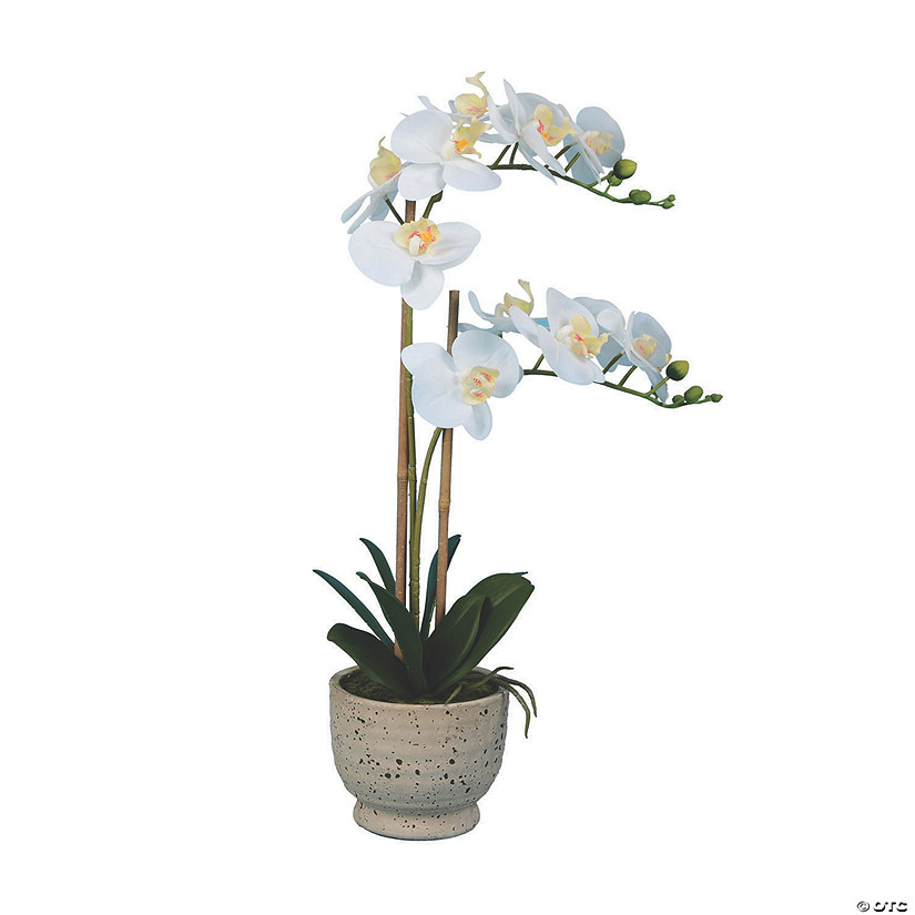 "Vickerman 24.5"" Artificial White Phalaenopsis In Cement Pot, Real Touch Petals Audio Thumbnail"