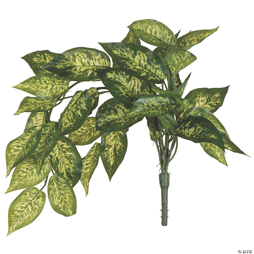 "Vickerman 24"" Artificial Green Dieffenbachia Bush Vine - 2/pk Audio Thumbnail"