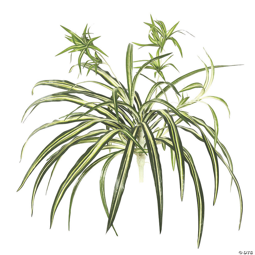 "Vickerman 24"" Artificial Green Spider Plant Audio Thumbnail"