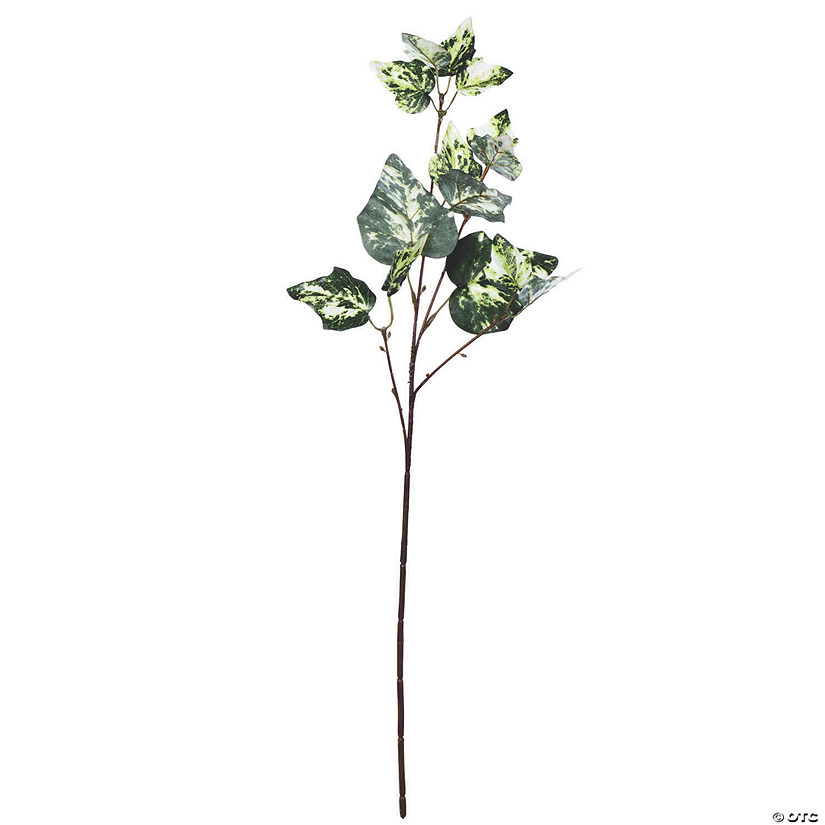 "Vickerman 24"" Artificial Green Variegated Ivy Spray - 6/pk Audio Thumbnail"
