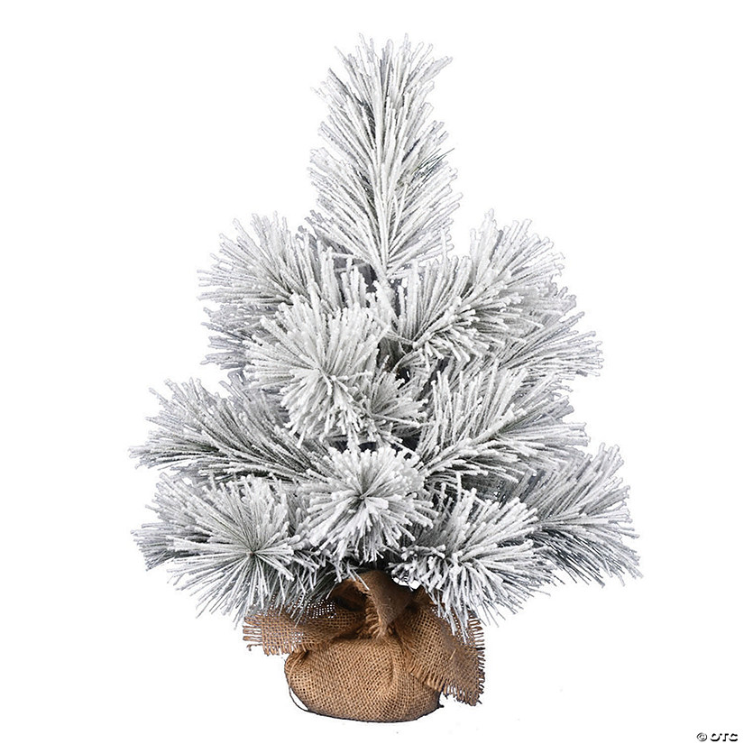 "Vickerman 24"" Frosted Beckett Pine Image Thumbnail"