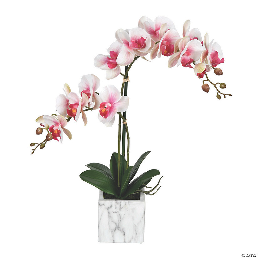 "Vickerman 25"" Potted Real Touch Pink and White Phalaenopsis Spray Audio Thumbnail"