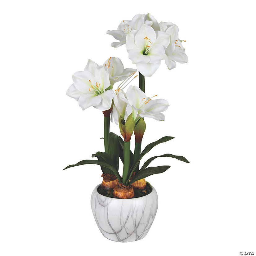 "Vickerman 25"" White Amaryllis Floral Arrangement Audio Thumbnail"